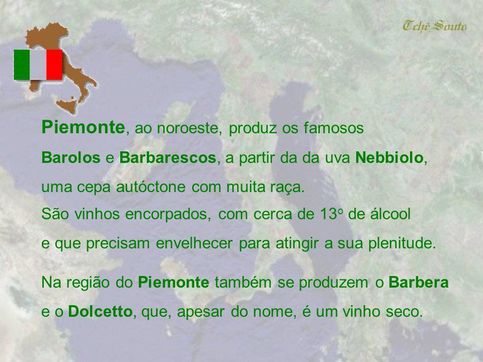 Enótria, a terra dos vinhos. Assim os Etruscos chamavam a Toscana, região central da Itália. Isso já indica o quanto o vinho está presente na história