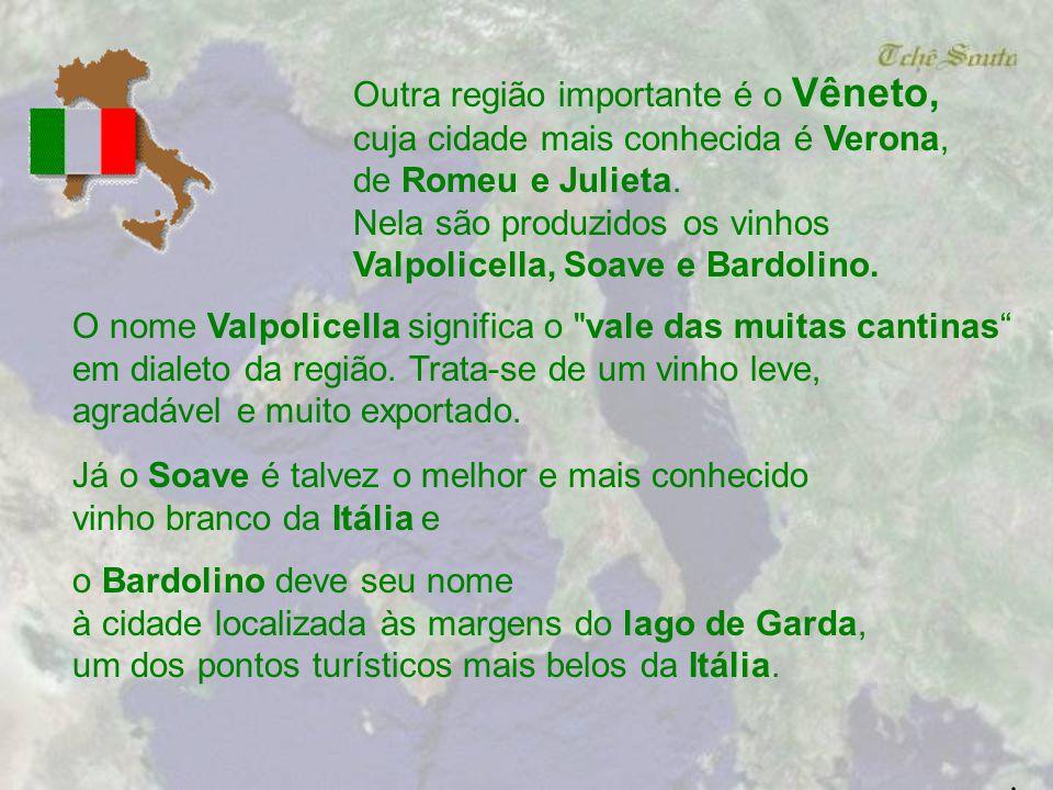 Piemonte, ao noroeste, produz os famosos Barolos e Barbarescos, a partir da da uva Nebbiolo, uma cepa autóctone com muita raça.. Na região do Piemonte