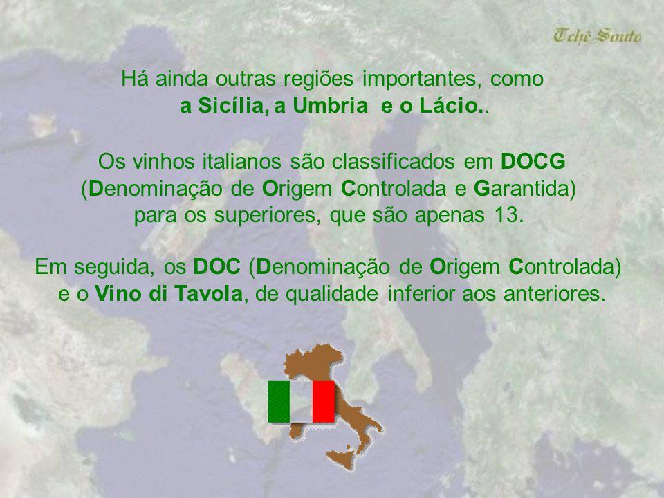 Um capítulo à parte na região da Toscana é o Brunello di Montalcino, um vinho muito encorpado que precisa em alguns casos envelhecer por até 20 anos p