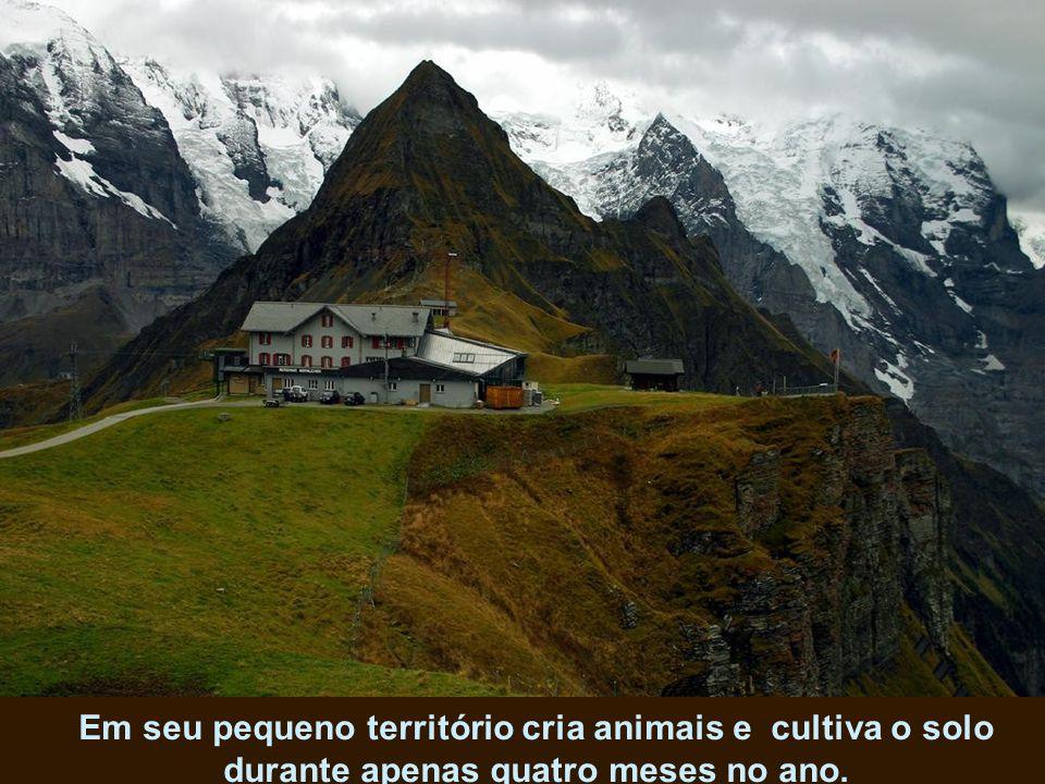 Outro exemplo é a Suíça, que não planta cacau mas tem o melhor chocolate do mundo.