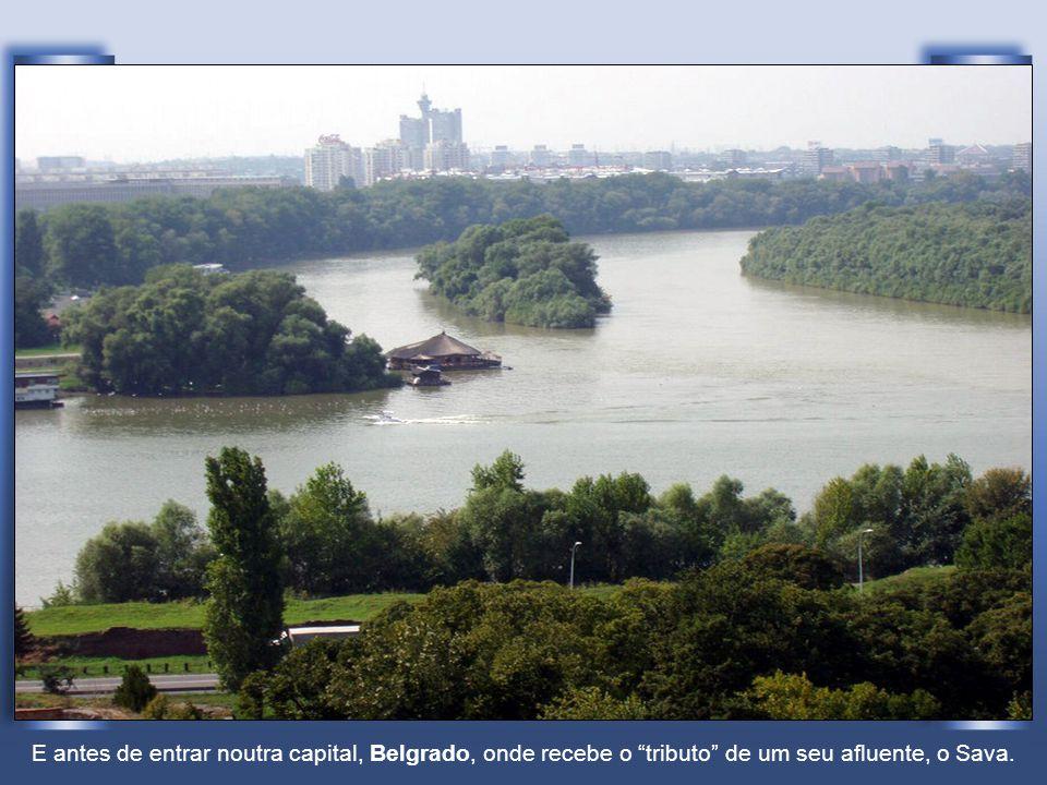 Já na Sérvia. Em Novi Sad
