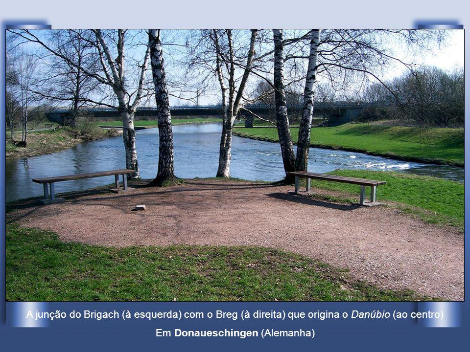 O Danúbio é o segundo rio mais longo da Europa (depois do Volga), com 2.850 quilómetros de extensão. Tem a sua origem na Floresta Negra, a 60 km a nor