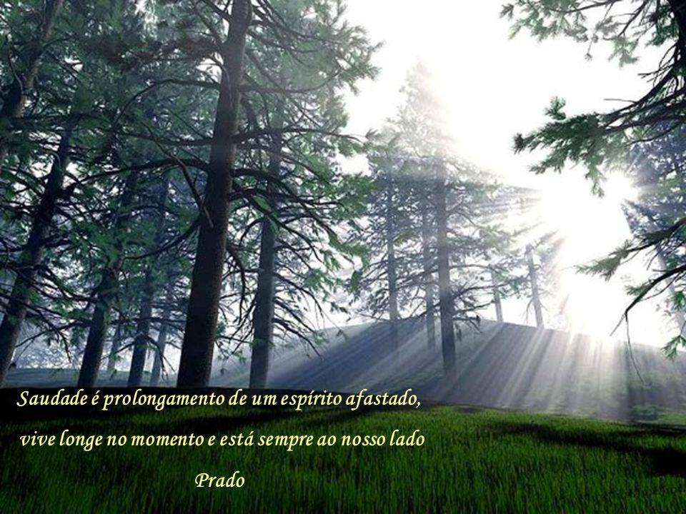 Saudade é prolongamento de um espírito afastado, vive longe no momento e está sempre ao nosso lado Prado