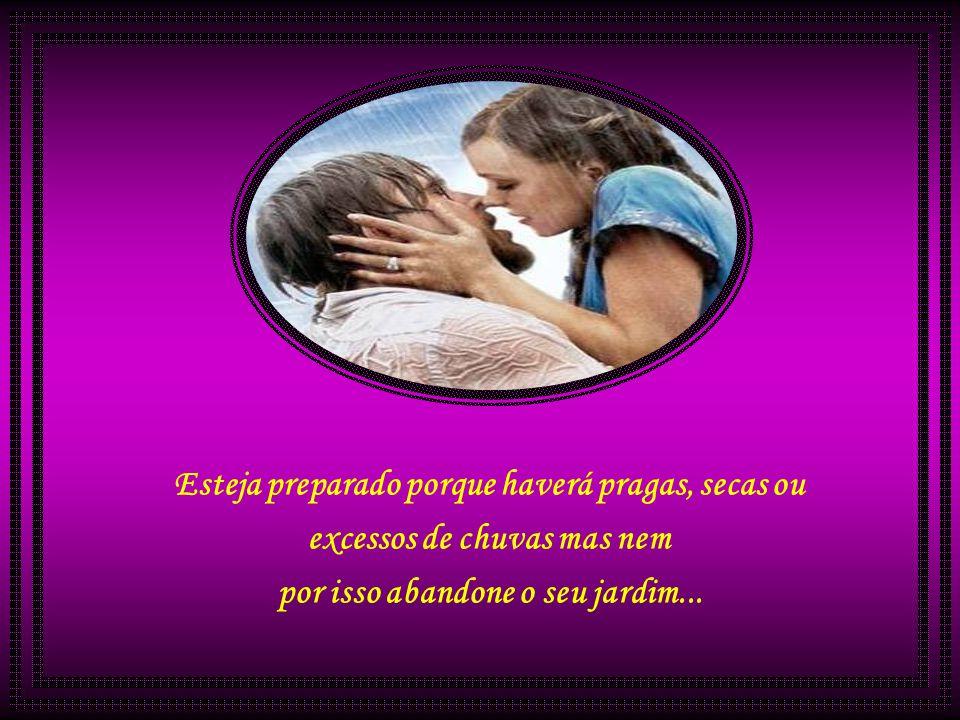 O amor é um exercício de jardinagem: arranque o que faz mal, prepare o terreno, semeie, seja paciente, regue e cuide...