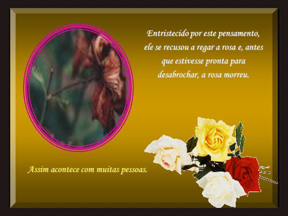 Um certo homem plantou uma rosa e passou a regá-la constantemente. Antes que ela desabrochasse, ele a examinava todos os dias e notou os espinhos que