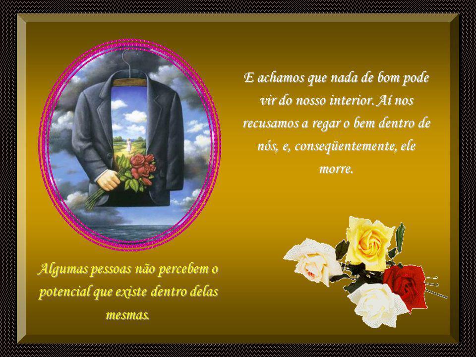 Dentro de cada alma há uma rosa; as qualidades dadas por Deus, e plantadas em nós crescem em meio aos espinhos de nossas faltas. Muitos de nós olhamos