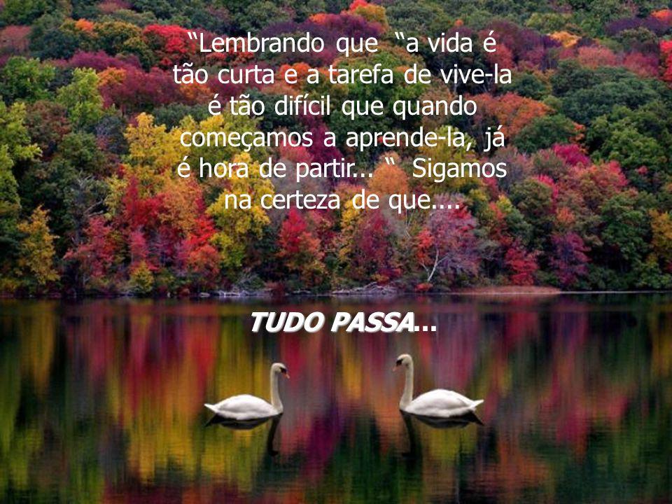 Lembrando que a vida é tão curta e a tarefa de vive-la é tão difícil que quando começamos a aprende-la, já é hora de partir...