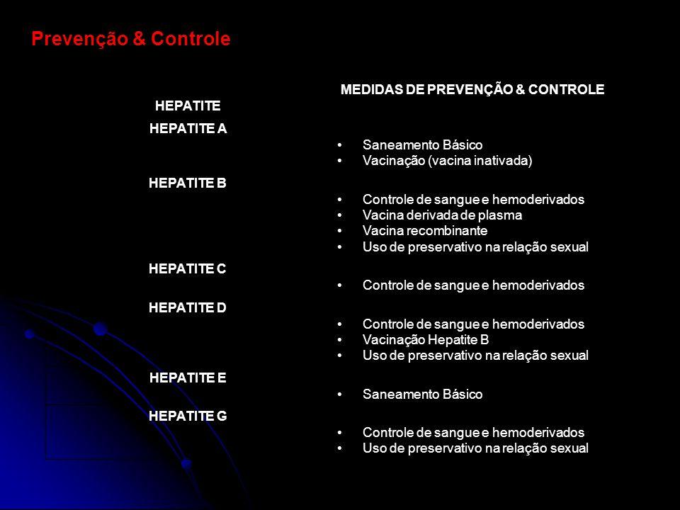 Prevenção & Controle HEPATITE MEDIDAS DE PREVENÇÃO & CONTROLE HEPATITE A Saneamento Básico Vacinação (vacina inativada) HEPATITE B Controle de sangue