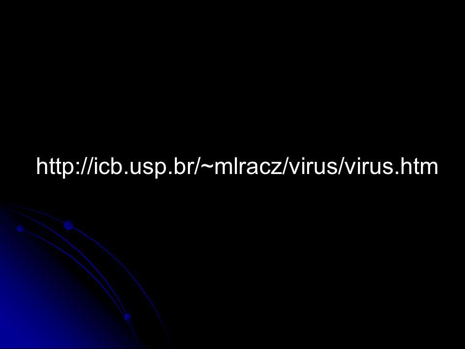http://icb.usp.br/~mlracz/virus/virus.htm