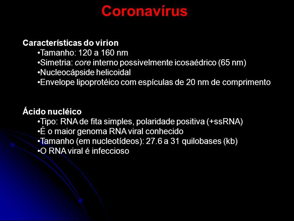 Coronavírus Características do virion Tamanho: 120 a 160 nm Simetria: core interno possivelmente icosaédrico (65 nm) Nucleocápside helicoidal Envelope