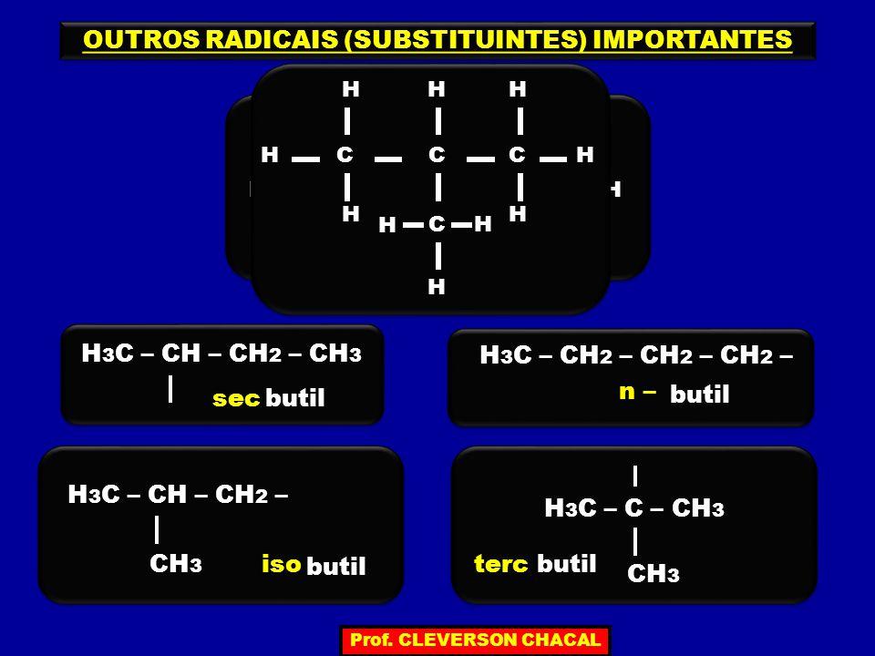 C H C H C H HC H H H H H 3 C – CH – CH 2 – CH 3 butil H H H 3 C – CH 2 – CH 2 – CH 2 – C H C H C H H H C H H H H H butil H 3 C – CH – CH 2 – CH 3 butil H 3 C – C – CH 3 CH 3 sec n – isoterc OUTROS RADICAIS (SUBSTITUINTES) IMPORTANTES Prof.