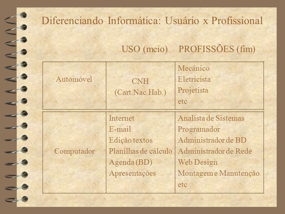 Diferenciando Informática: Usuário x Profissional USO (meio) PROFISSÕES (fim) Computador Internet E-mail Edição textos Planilhas de cálculo Agenda (BD