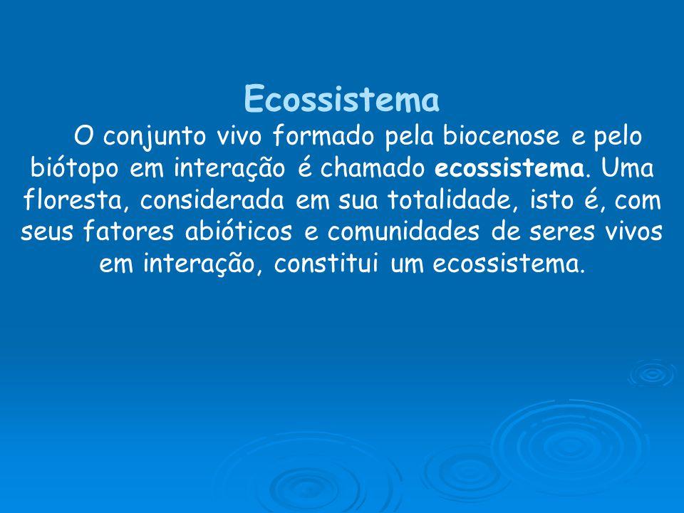 Ecossistema O conjunto vivo formado pela biocenose e pelo biótopo em interação é chamado ecossistema. Uma floresta, considerada em sua totalidade, ist