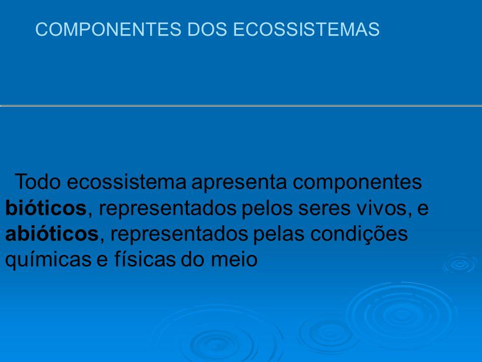 COMPONENTES DOS ECOSSISTEMAS Todo ecossistema apresenta componentes bióticos, representados pelos seres vivos, e abióticos, representados pelas condições químicas e físicas do meio