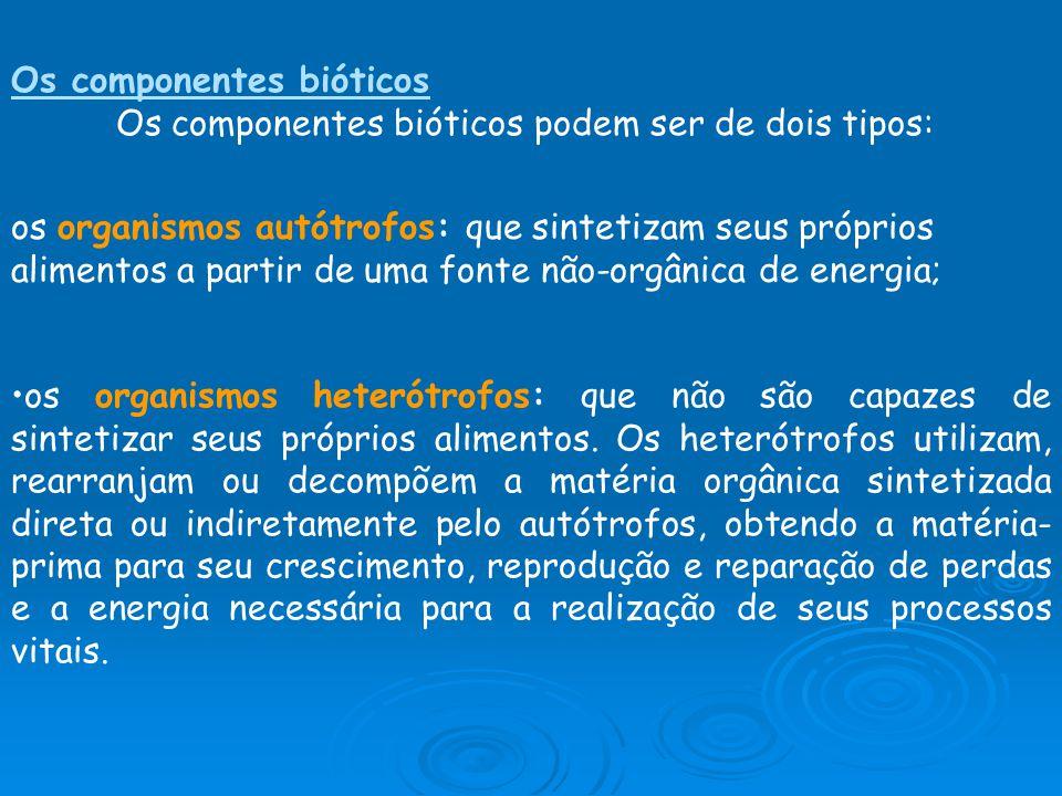 Os componentes bióticos Os componentes bióticos podem ser de dois tipos: os organismos autótrofos: que sintetizam seus próprios alimentos a partir de uma fonte não-orgânica de energia; os organismos heterótrofos: que não são capazes de sintetizar seus próprios alimentos.