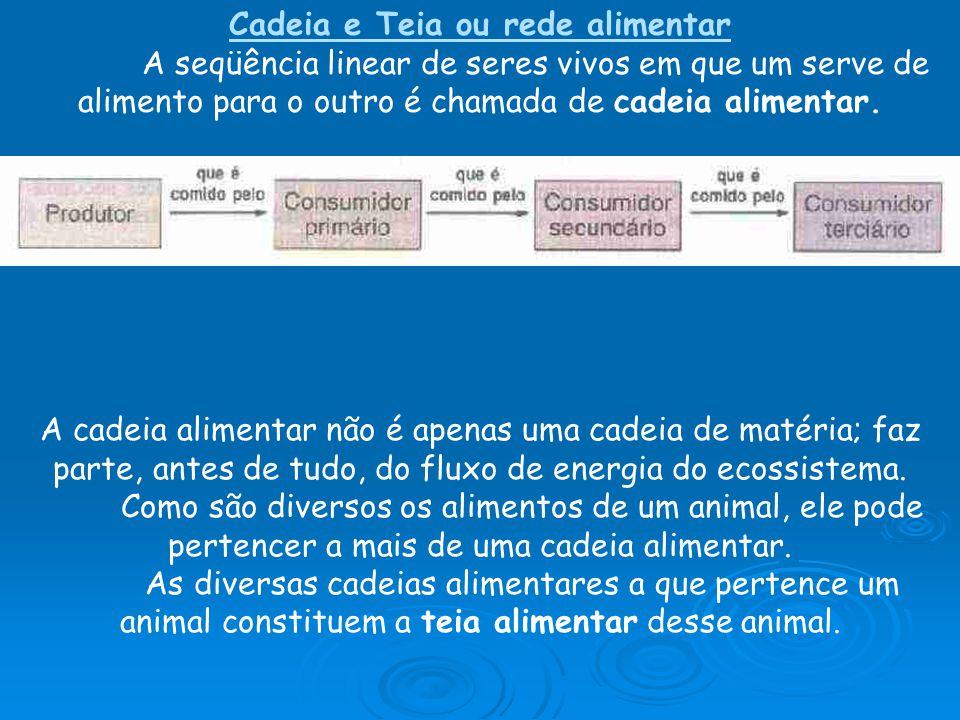 Cadeia e Teia ou rede alimentar A seqüência linear de seres vivos em que um serve de alimento para o outro é chamada de cadeia alimentar. A cadeia ali