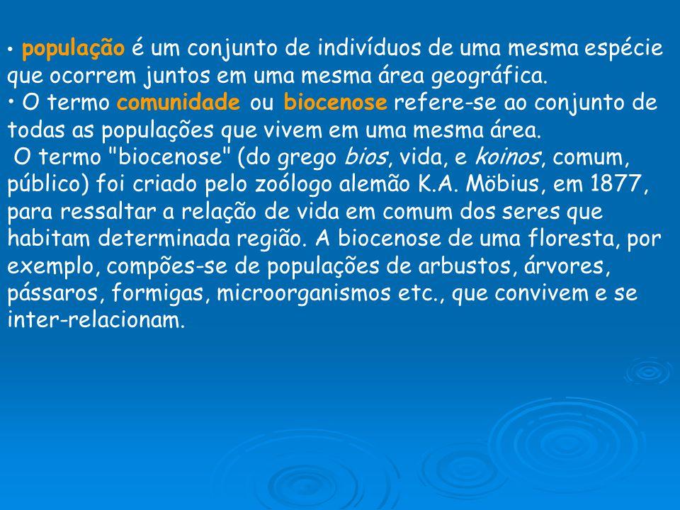 Biótopo Para viver, a biocenose depende de fatores componentes físicos e químicos do ambiente.