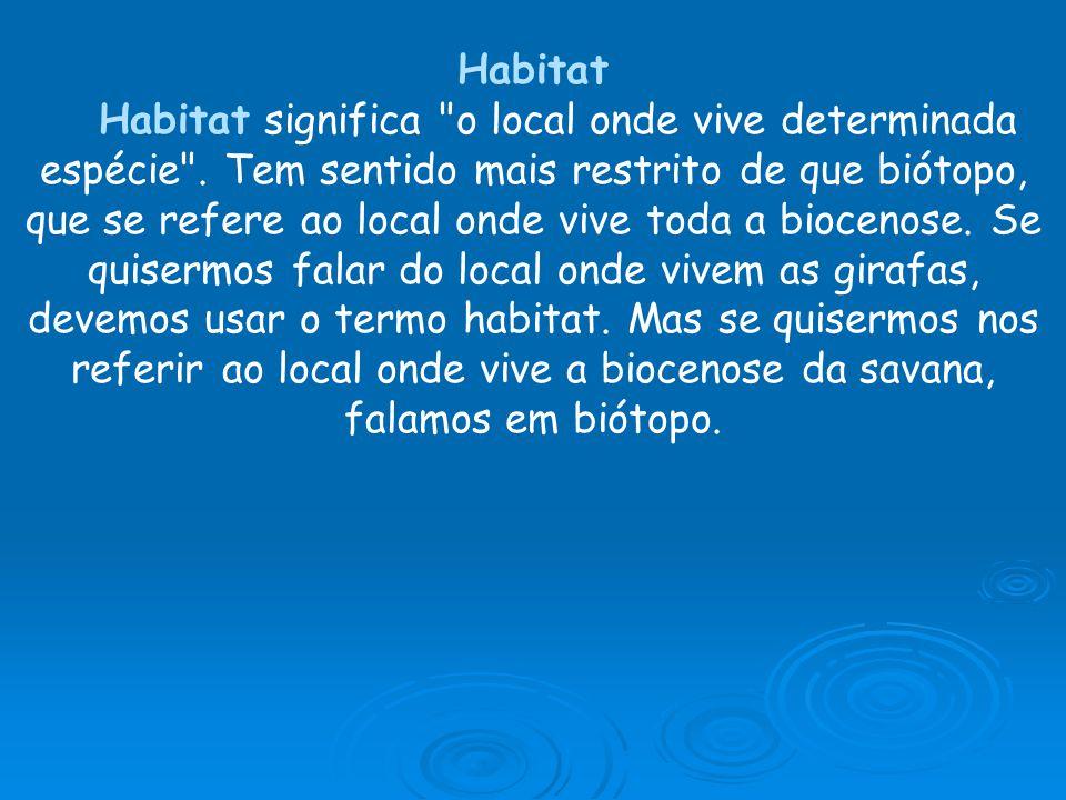 Habitat Habitat significa o local onde vive determinada espécie .