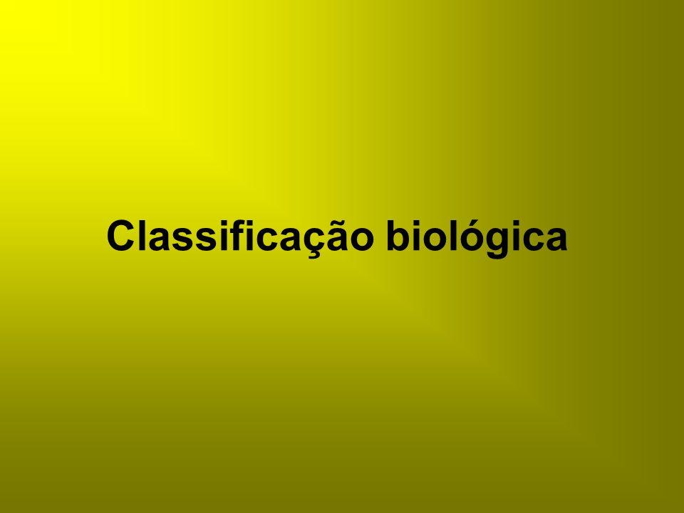 Classificação biológica