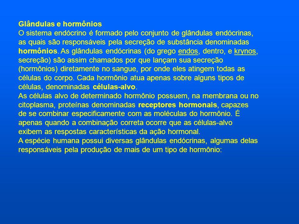Glândulas e hormônios O sistema endócrino é formado pelo conjunto de glândulas endócrinas, as quais são responsáveis pela secreção de substância denom