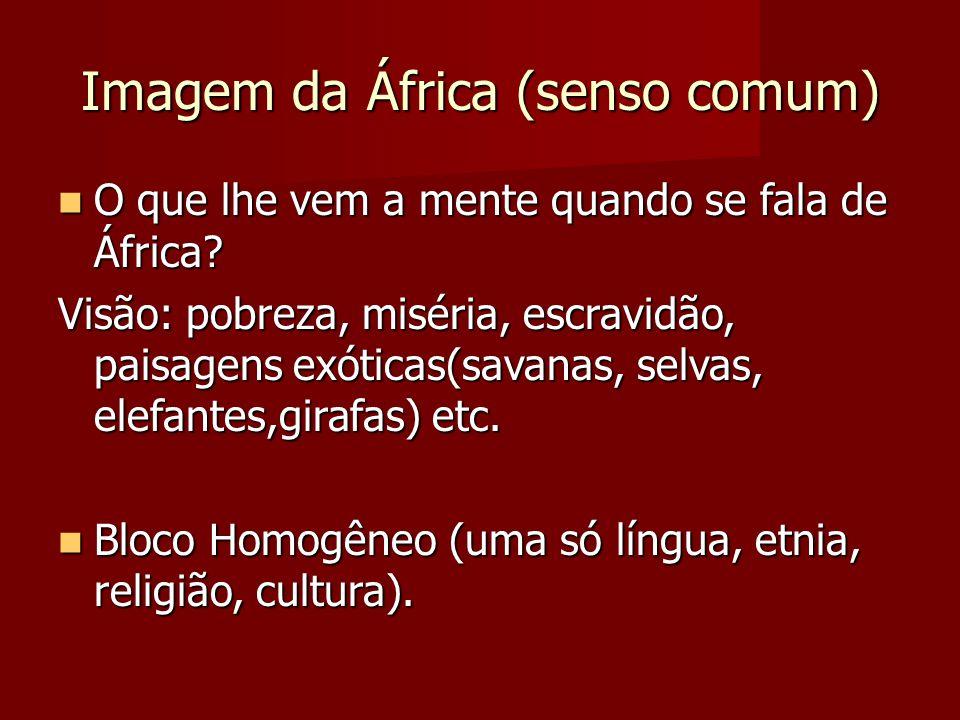 Imagem da África (senso comum) O que lhe vem a mente quando se fala de África? O que lhe vem a mente quando se fala de África? Visão: pobreza, miséria