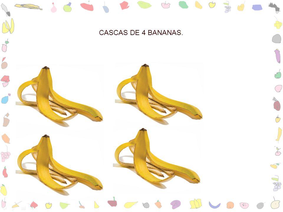 CASCAS DE 4 BANANAS.