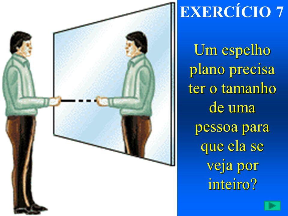 EXERCÍCIO 7 Um espelho plano precisa ter o tamanho de uma pessoa para que ela se veja por inteiro?