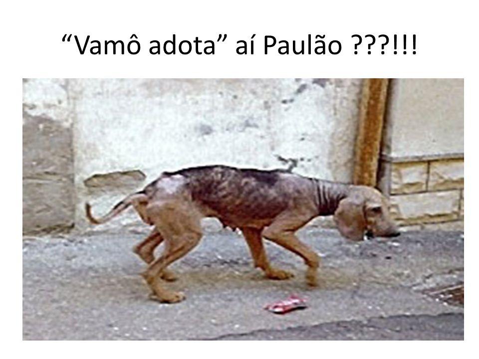Vamô adota aí Paulão ???!!!
