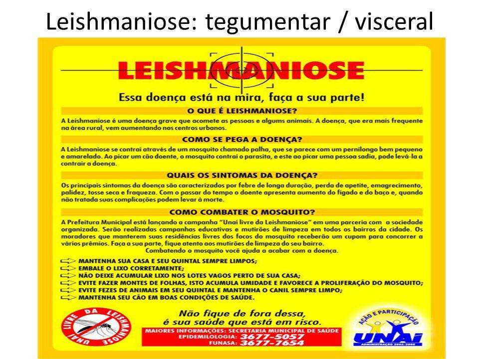 Leishmaniose: tegumentar / visceral