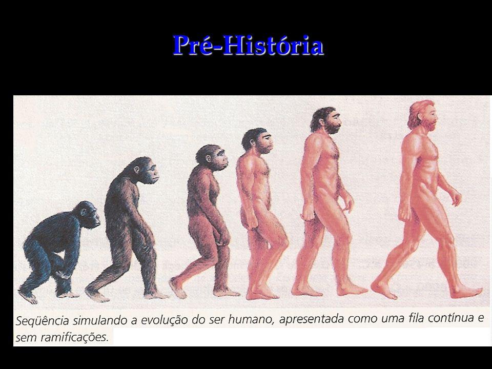 Homo Sapiens Origem na África, há 200 mil anos; Cérebro com 1400 cm 3 Abandonou a África por volta de 70 mil anos, povoando todos os continentes;