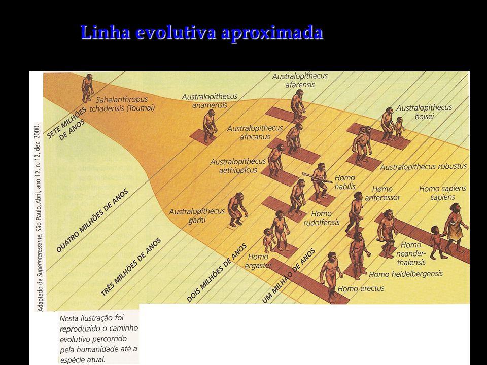 Paleolítico: Características: Vive em pequenos grupos nômades e se abriga em cavernas.Vive em pequenos grupos nômades e se abriga em cavernas.