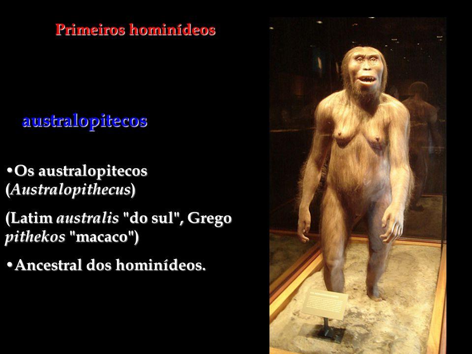 Primeiros hominídeos Os australopitecos ( Australopithecus ) Os australopitecos ( Australopithecus ) (Latim australis