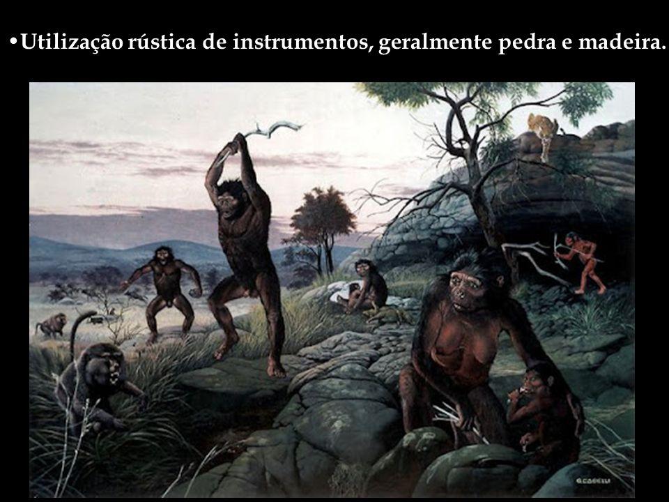 Homo Habilis Viveu cerca de 2 milhões de anos atrás O primeiro a construir e utilizar ferramentas de pedra lascada, o que lhe valeu o nome específico: habilis, o habilidoso.