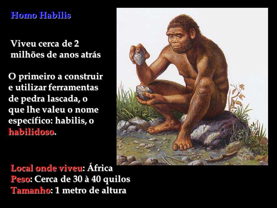 Homo Habilis Viveu cerca de 2 milhões de anos atrás O primeiro a construir e utilizar ferramentas de pedra lascada, o que lhe valeu o nome específico: