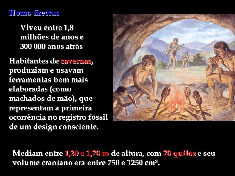 Homo Erectus Viveu entre 1,8 milhões de anos e 300 000 anos atrás Habitantes de cavernas, produziam e usavam ferramentas bem mais elaboradas (como mac