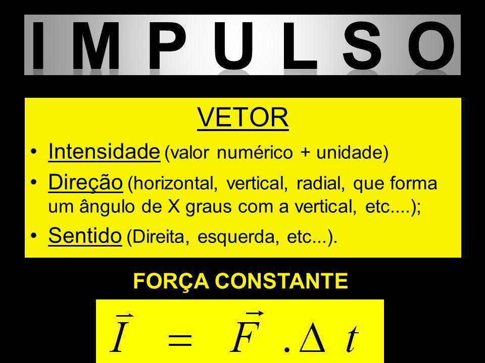 VETOR Intensidade (valor numérico + unidade) Direção (horizontal, vertical, radial, que forma um ângulo de X graus com a vertical, etc....); Sentido (