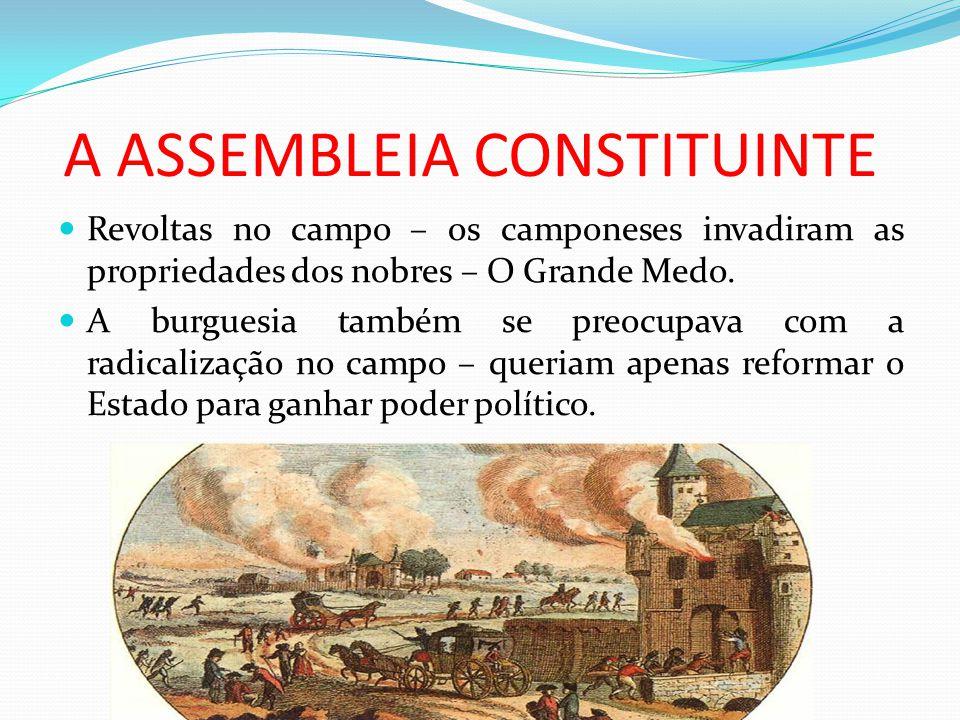 A ASSEMBLEIA CONSTITUINTE Revoltas no campo – os camponeses invadiram as propriedades dos nobres – O Grande Medo. A burguesia também se preocupava com