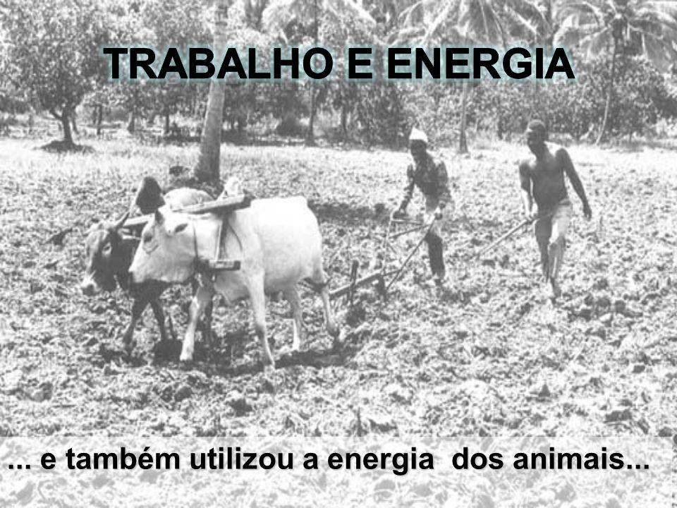 ... e também utilizou a energia dos animais...