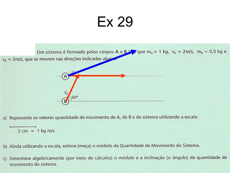 Ex 29