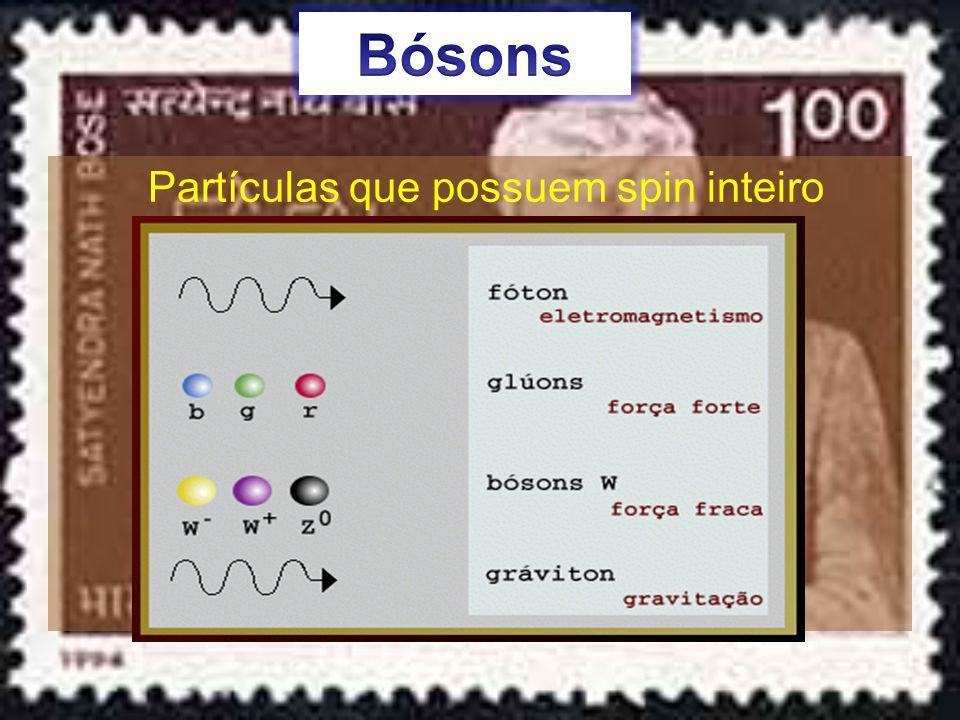 Partículas que possuem spin inteiro