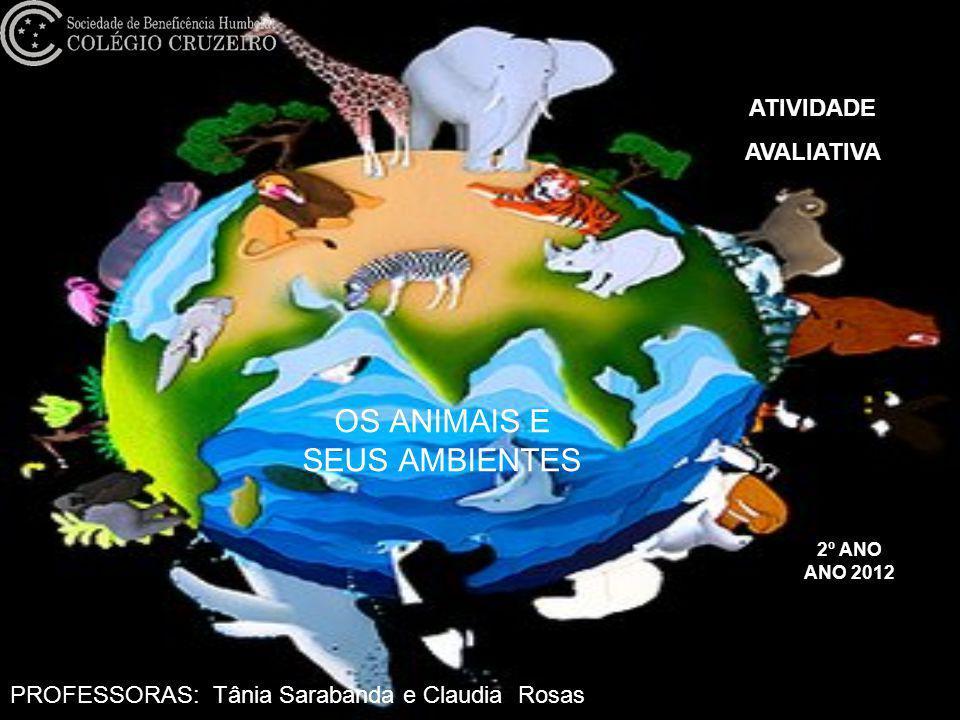 OS ANIMAIS E SEUS AMBIENTES 2º ANO ANO 2012 ATIVIDADE AVALIATIVA PROFESSORAS: Tânia Sarabanda e Claudia Rosas