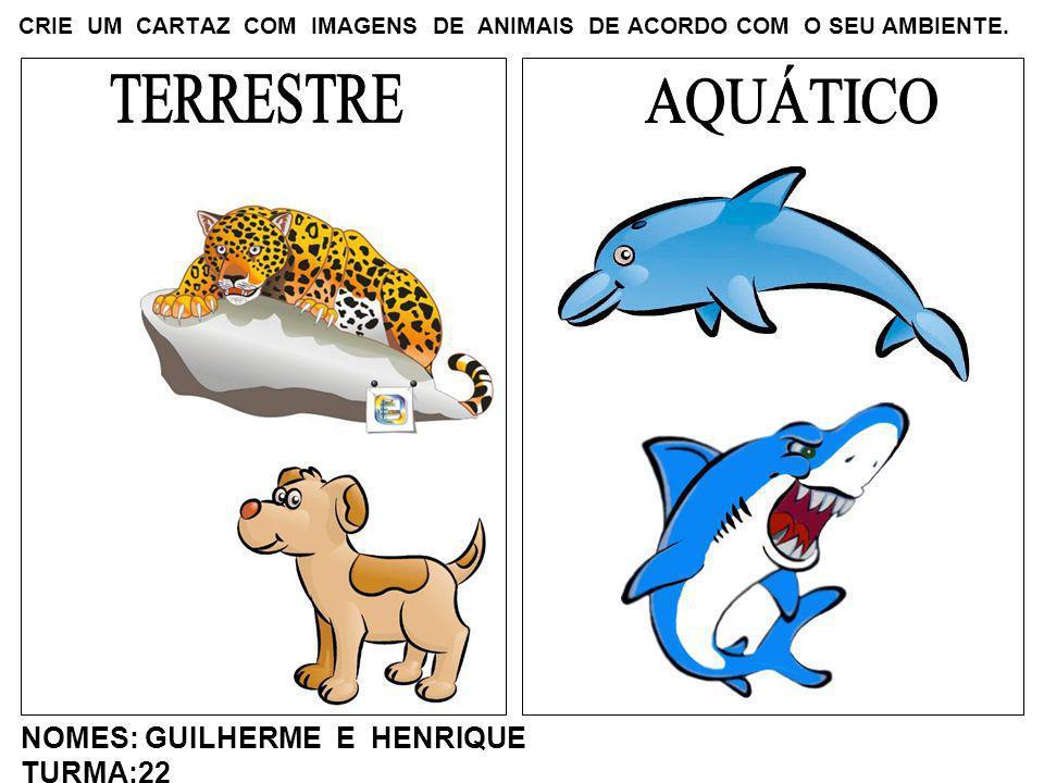 CRIE UM CARTAZ COM IMAGENS DE ANIMAIS DE ACORDO COM O SEU AMBIENTE. NOMES: GUILHERME E HENRIQUE TURMA:22