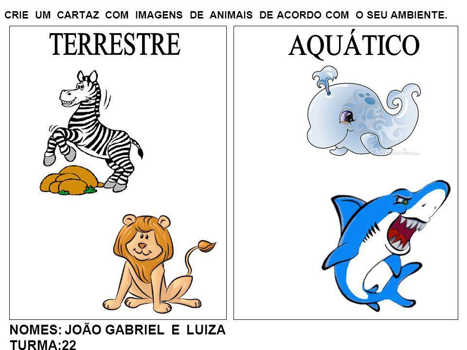 CRIE UM CARTAZ COM IMAGENS DE ANIMAIS DE ACORDO COM O SEU AMBIENTE. NOMES: JOÃO GABRIEL E LUIZA TURMA:22