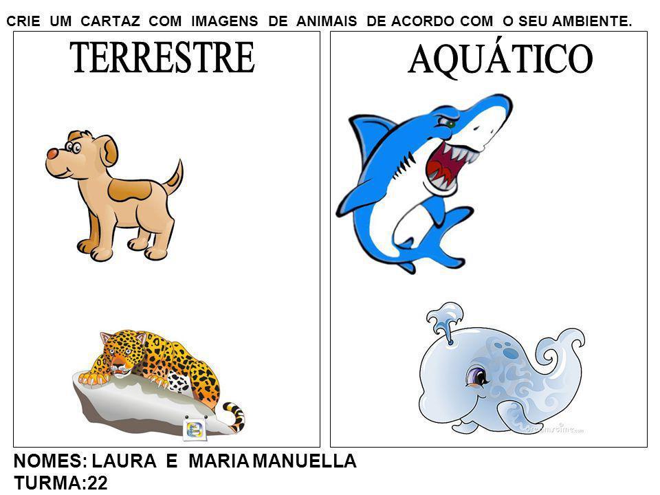 CRIE UM CARTAZ COM IMAGENS DE ANIMAIS DE ACORDO COM O SEU AMBIENTE. NOMES: LAURA E MARIA MANUELLA TURMA:22
