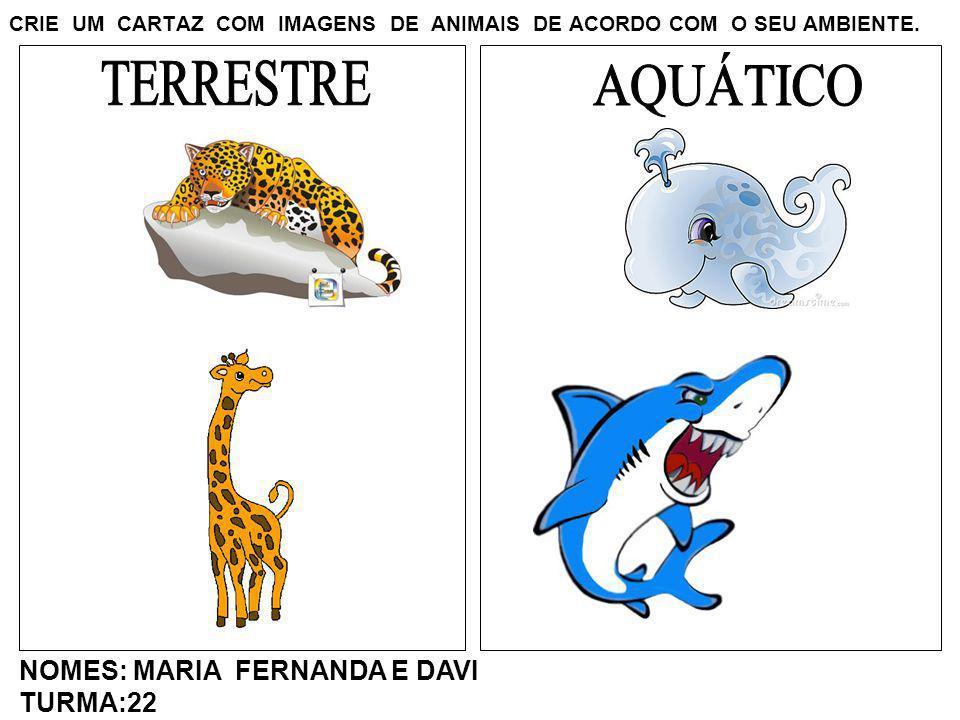 CRIE UM CARTAZ COM IMAGENS DE ANIMAIS DE ACORDO COM O SEU AMBIENTE. NOMES: MARIA FERNANDA E DAVI TURMA:22