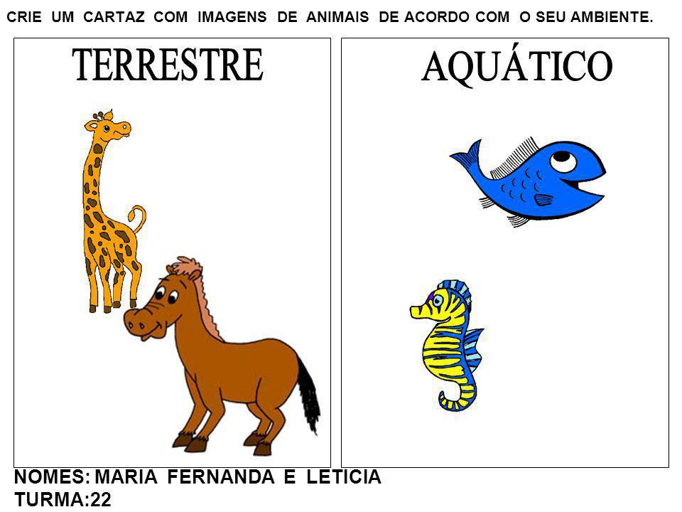 CRIE UM CARTAZ COM IMAGENS DE ANIMAIS DE ACORDO COM O SEU AMBIENTE. NOMES: MARIA FERNANDA E LETICIA TURMA:22