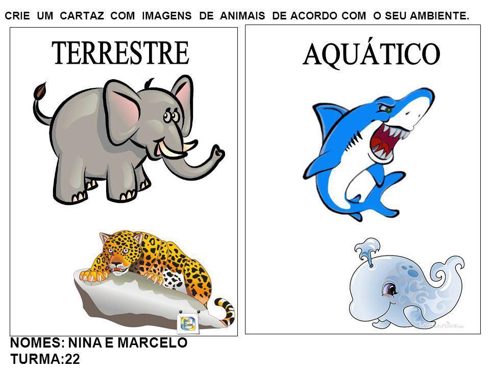 CRIE UM CARTAZ COM IMAGENS DE ANIMAIS DE ACORDO COM O SEU AMBIENTE. NOMES: NINA E MARCELO TURMA:22