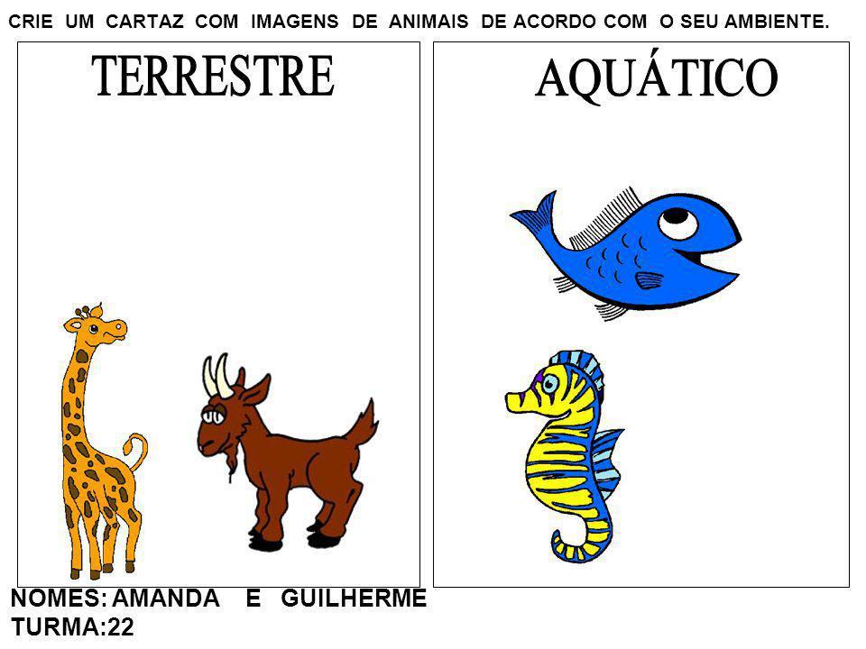 CRIE UM CARTAZ COM IMAGENS DE ANIMAIS DE ACORDO COM O SEU AMBIENTE. NOMES: AMANDA E GUILHERME TURMA:22