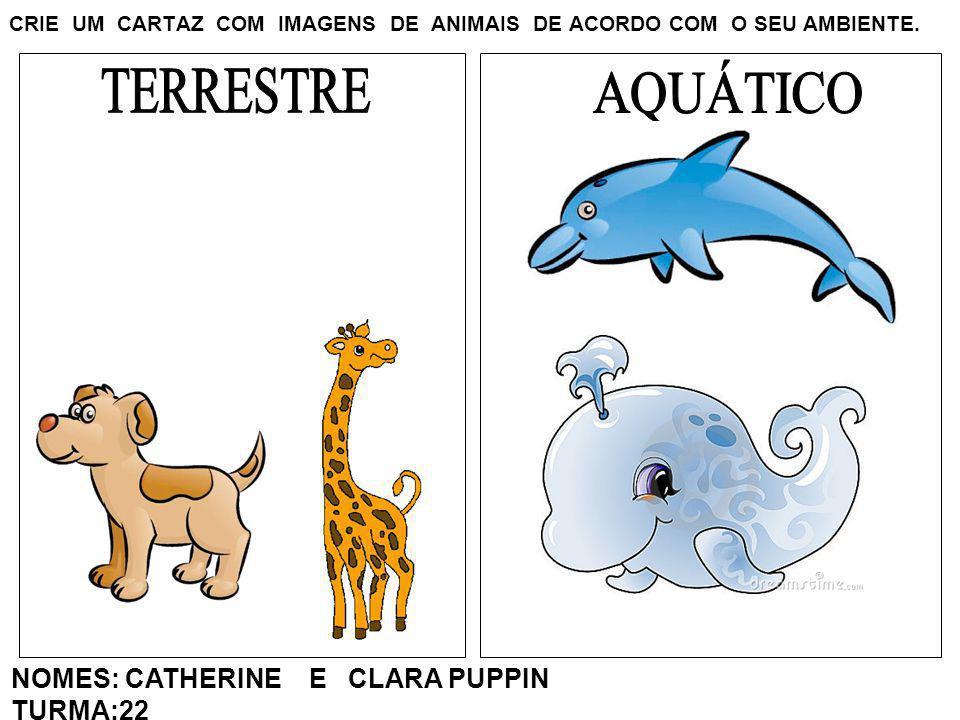 CRIE UM CARTAZ COM IMAGENS DE ANIMAIS DE ACORDO COM O SEU AMBIENTE. NOMES: CATHERINE E CLARA PUPPIN TURMA:22