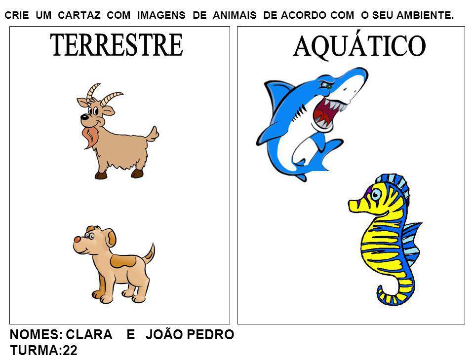 CRIE UM CARTAZ COM IMAGENS DE ANIMAIS DE ACORDO COM O SEU AMBIENTE. NOMES: CLARA E JOÃO PEDRO TURMA:22